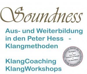 Logo-Soundness-Brand-Erbisdorf